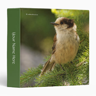 Profile of a Cute Grey Jay / Whiskeyjack 3 Ring Binder
