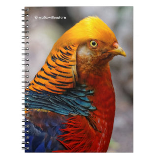 Profile of a Golden Red Pheasant Spiral Notebook