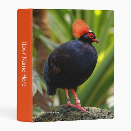 Profile Of A Roul-Roul Crested Wood Partridge Mini Binder