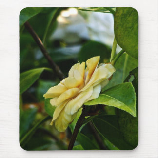 PROFILE OF A YELLOW ROSE IN SPRING BLOOM MOUSE PAD