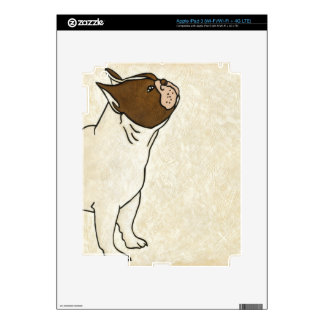 Profile of French Bulldog Looking Up Skin For iPad 3