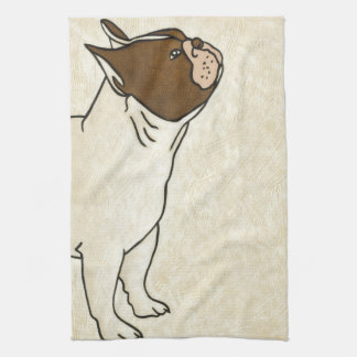 Profile of French Bulldog Looking Up Towel