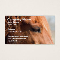Profile of Horse Business Card
