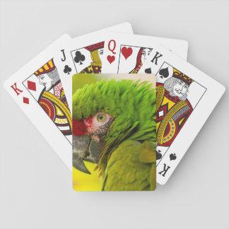 Profile of macaw at Santa Barbara Zoo Deck Of Cards