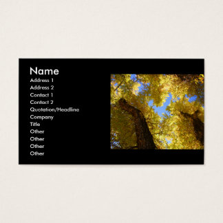 profile or business card, aspen business card