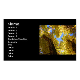 profile or business card, aspen Double-Sided standard business cards (Pack of 100)