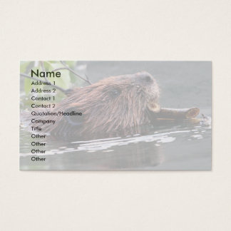 profile or business card, beaver business card