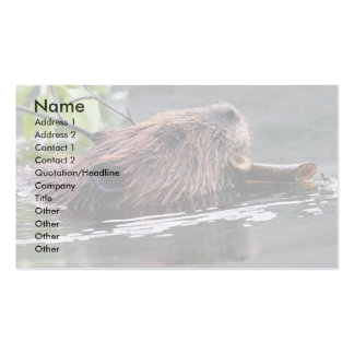 profile or business card, beaver Double-Sided standard business cards (Pack of 100)