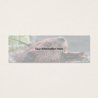 profile or business card, beaver mini business card