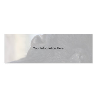 profile or business card, bison Double-Sided mini business cards (Pack of 20)