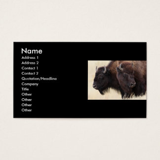 profile or business card, bison business card