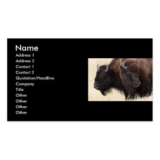 profile or business card, bison Double-Sided standard business cards (Pack of 100)