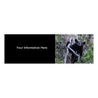 profile or business card black bear cub