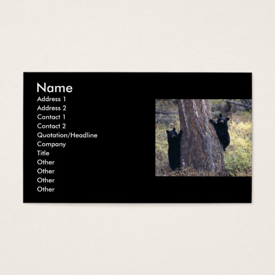 profile or business card, black bear cubs business card