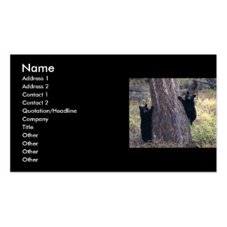 profile or business card, black bear cubs Double-Sided standard business cards (Pack of 100)