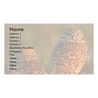 profile or business card, burrowing owls Double-Sided standard business cards (Pack of 100)