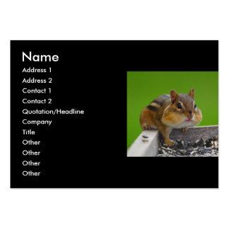 profile or business card, chipmunk