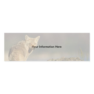 profile or business card, coyote Double-Sided mini business cards (Pack of 20)