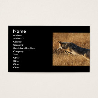 profile or business card, coyote jumping business card