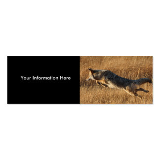 profile or business card, coyote jumping Double-Sided mini business cards (Pack of 20)
