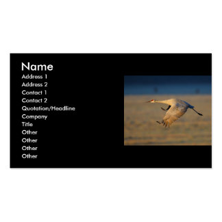 profile or business card, crane Double-Sided standard business cards (Pack of 100)