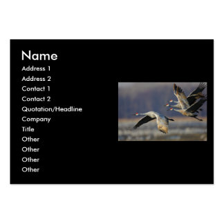 profile or business card, cranes large business cards (Pack of 100)