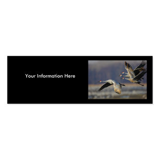 profile or business card, cranes Double-Sided mini business cards (Pack of 20)