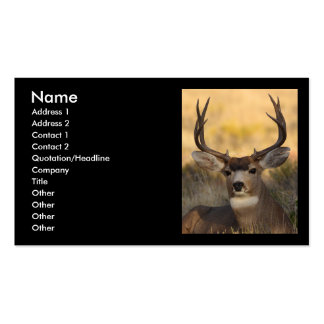 profile or business card, deer Double-Sided standard business cards (Pack of 100)
