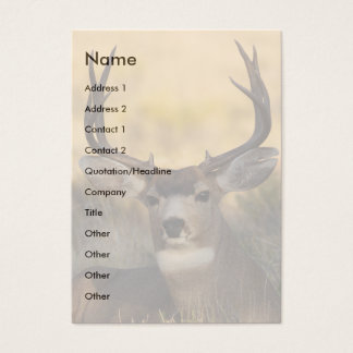 profile or business card, deer business card