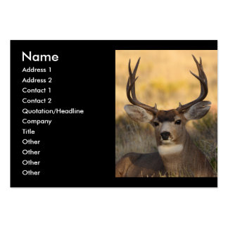 profile or business card, deer large business cards (Pack of 100)