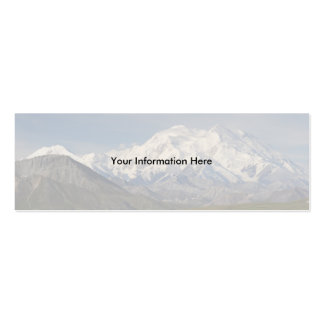 profile or business card, Denali Double-Sided Mini Business Cards (Pack Of 20)