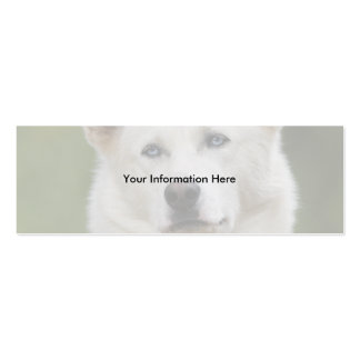 profile or business card, dog Double-Sided mini business cards (Pack of 20)