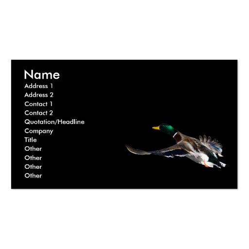 profile or business card, duck Double-Sided standard business cards (Pack of 100)