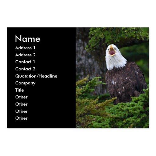 profile or business card, eagle