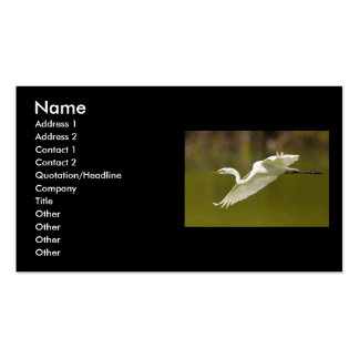 profile or business card, egret Double-Sided standard business cards (Pack of 100)