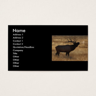 profile or business card, elk bugle business card