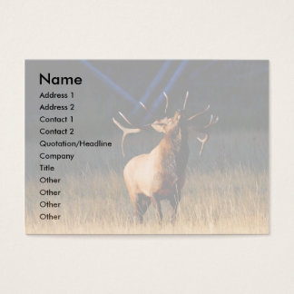 profile or business card, elk business card