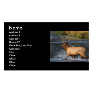 profile or business card, elk splash Double-Sided standard business cards (Pack of 100)