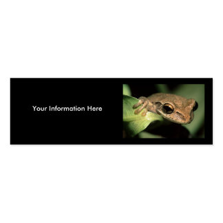 profile or business card, frog Double-Sided mini business cards (Pack of 20)