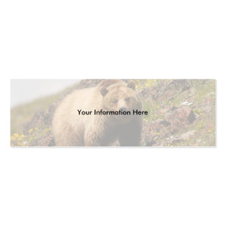 profile or business card, grizzly bear