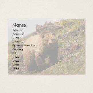 profile or business card, grizzly bear business card