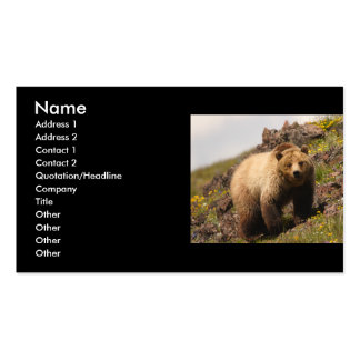 profile or business card, grizzly bear Double-Sided standard business cards (Pack of 100)
