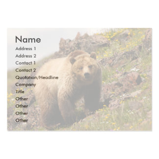 profile or business card, grizzly bear large business cards (Pack of 100)