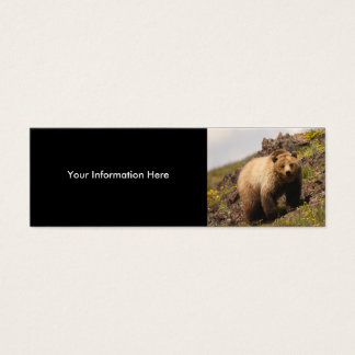 profile or business card, grizzly bear mini business card