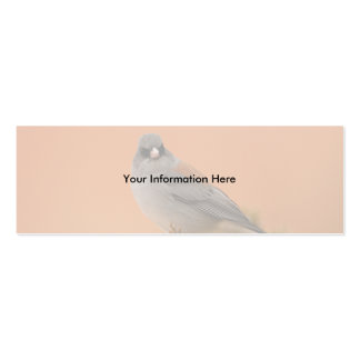profile or business card, junco Double-Sided mini business cards (Pack of 20)