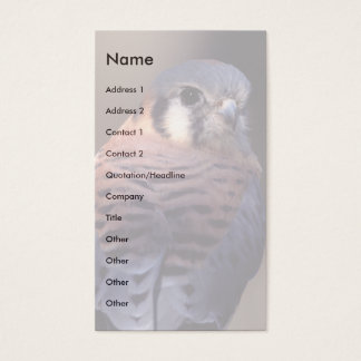 profile or business card, kestrel business card