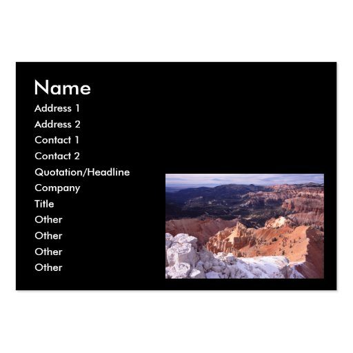 profile or business card, landscape large business cards (Pack of 100)