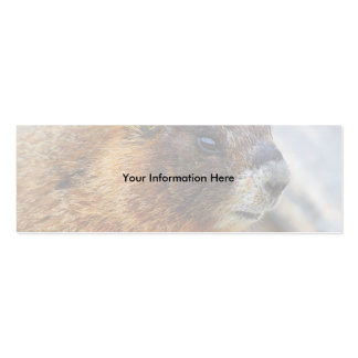 profile or business card, marmot Double-Sided mini business cards (Pack of 20)