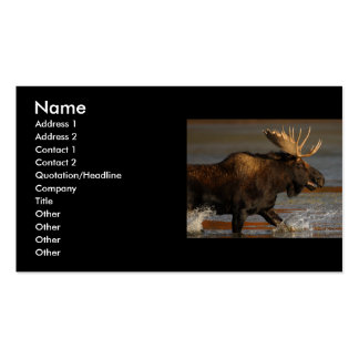 profile or business card, moose Double-Sided standard business cards (Pack of 100)