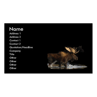 profile or business card, moose splash Double-Sided standard business cards (Pack of 100)